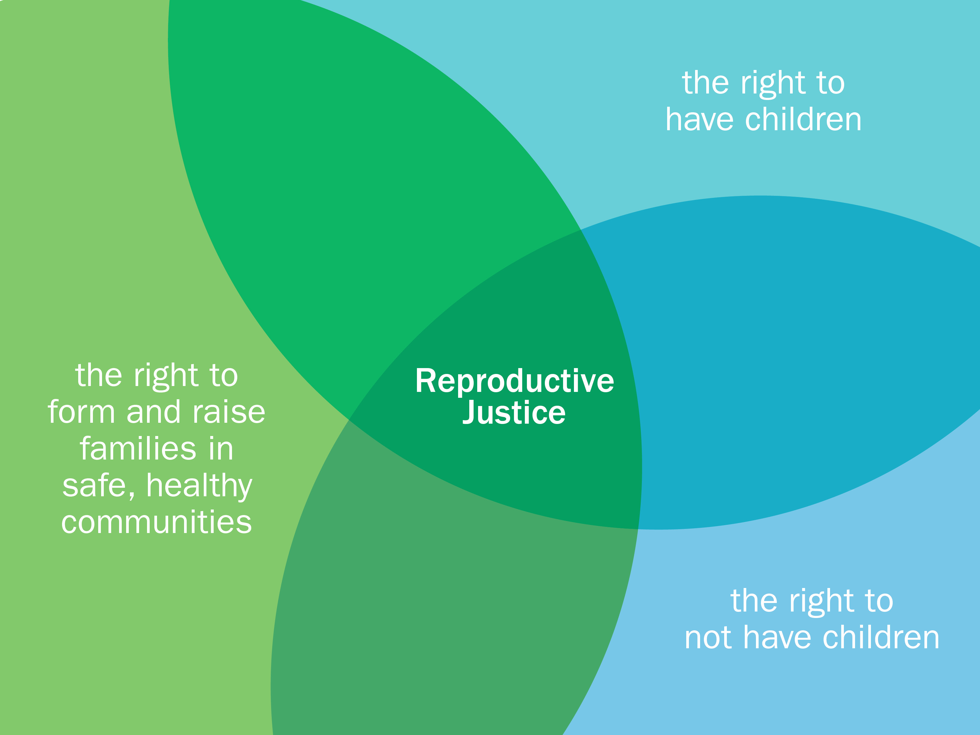 reproductive justice graphic