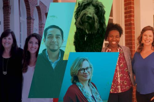 collage of counseling staff members